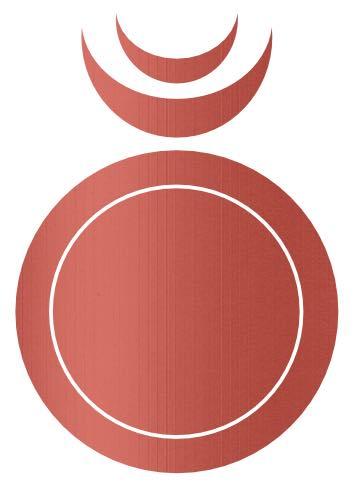 Icon1 Circle RoseGold
